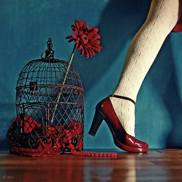 AlyzPhotography Colors, Cages Red, Red Colors, Inspiration Colors, Red Shoes, Colors Combinations, Shoes Wise, Photographers Red, Colors Inspiration