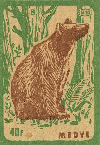 Vintage bear in the woods matchbox label.