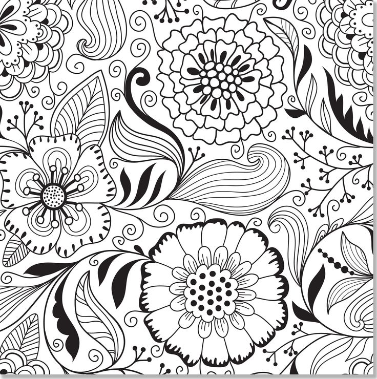 Butterfly And Flower Coloring Pages For Adults Free Printable