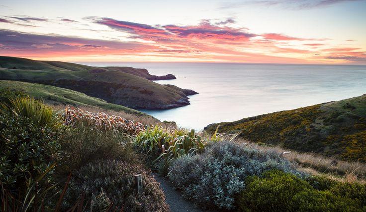 Fisherman's Bay, New Zealand