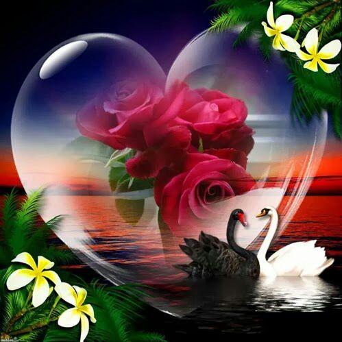 Водопадов картинки, картинки с надписью добрый вечер с сердечками