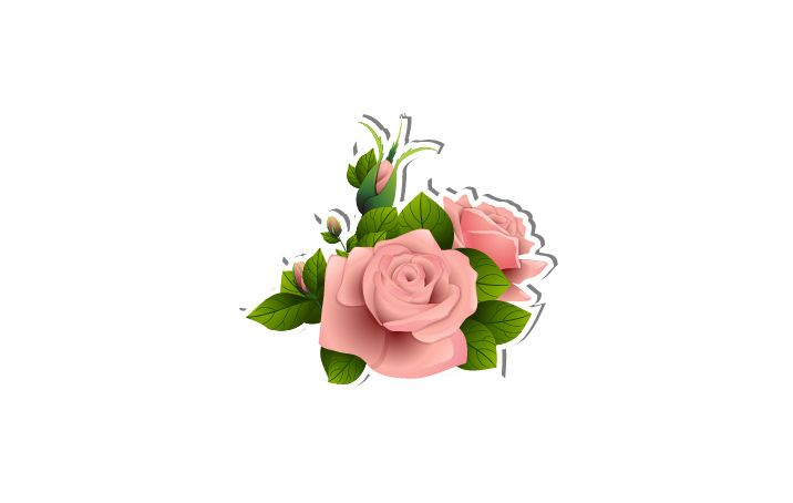 Roses Vector Image  #roses #vector #vectorpack  http://www.vectorvice.com/spring-special-vector-pack