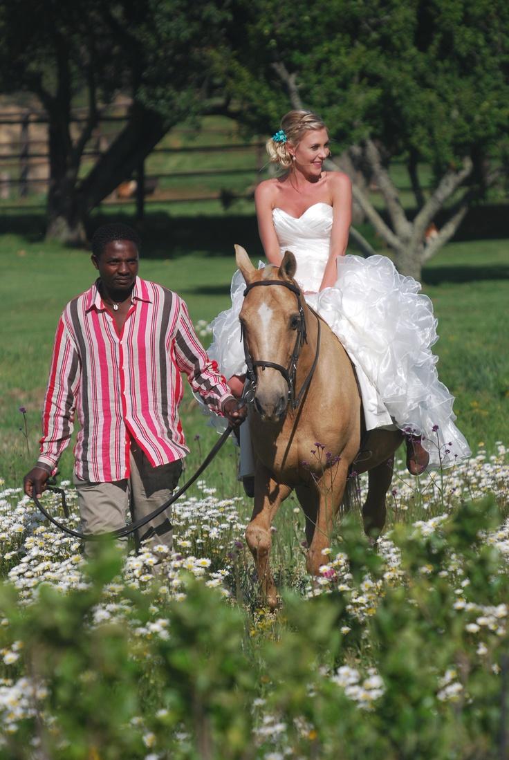 Wedding at Oaklands Country, nestled in the Drakensberg above Van Reenen's Pass. http://www.n3gateway.com/the-n3-gateway-route/van-reenen-swinburne-tourism.htm