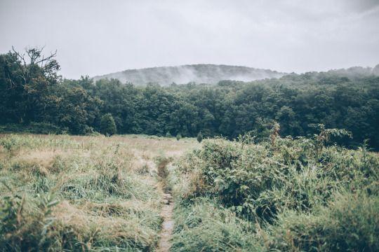 Harriman State Park, Matt Schiels