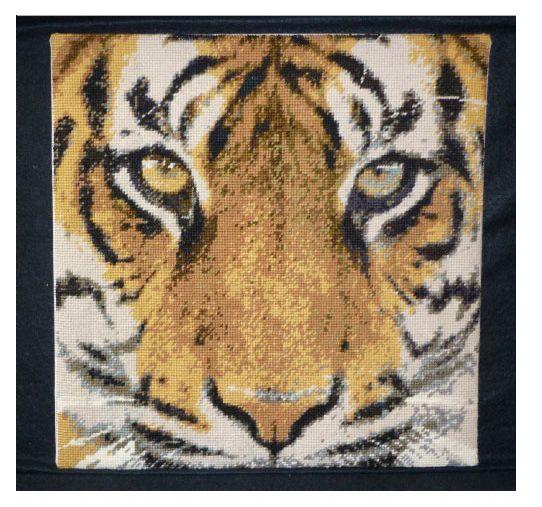 Bengal Tiger Counted Tiger Needlepoint Kit
