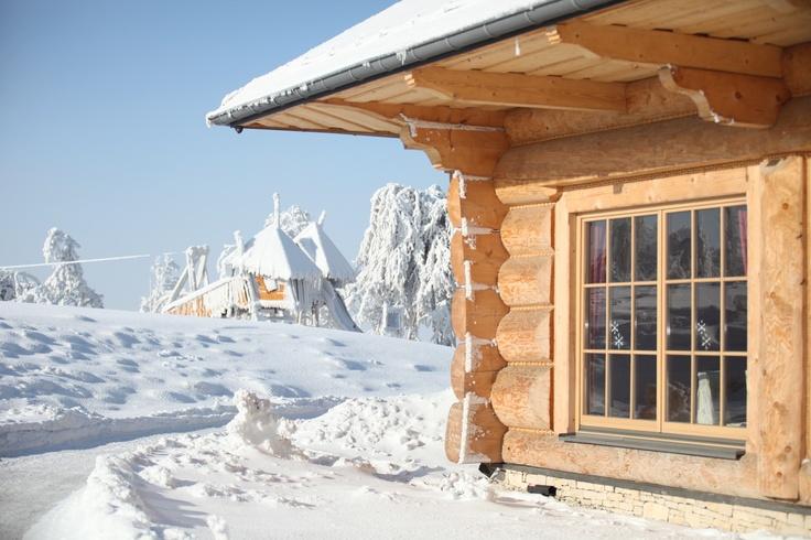 Chochołowy Dwór - ładniejsza strona zimy // brighter side of #winter