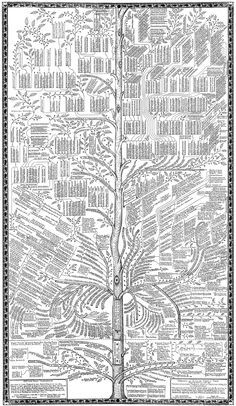 Absolutely amazing family tree...it must have taken months to draw this! thoroughgood-72.gif (2610×4500)