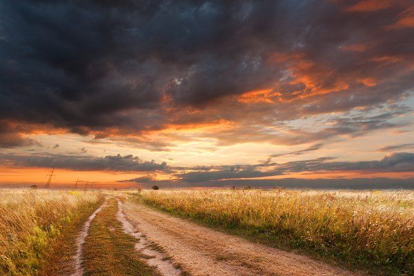 Evening Sunset In The Field In 2020 Summer Landscape Evening Sunset Landscape