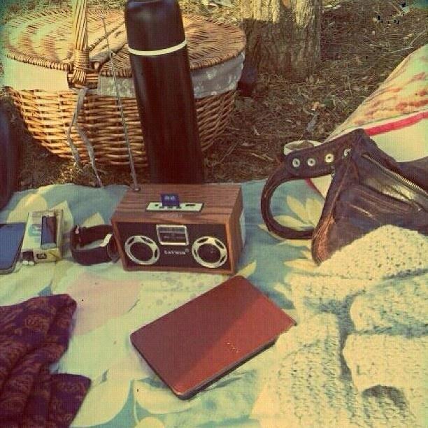 Dalyan plajı. Luna Lupus ile piknik.