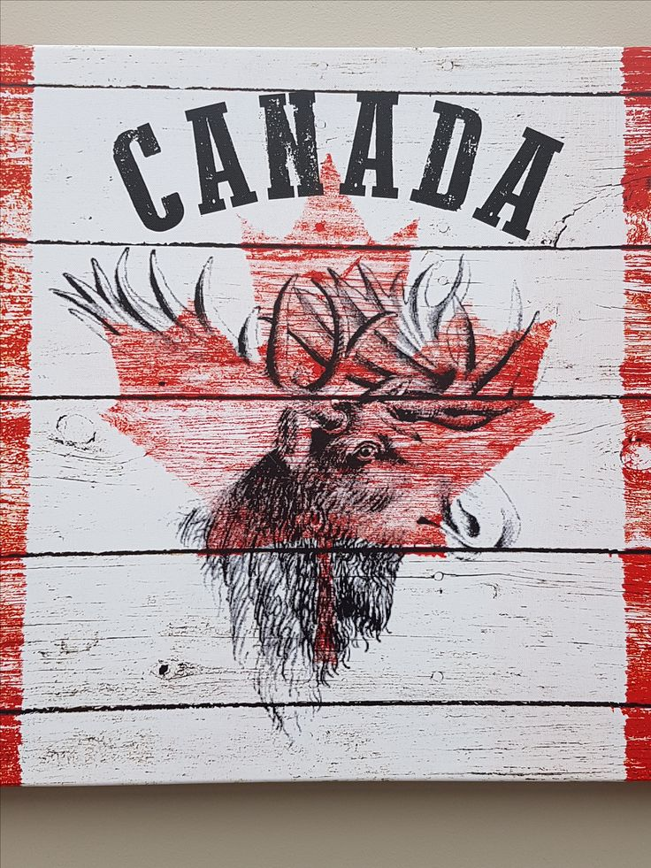Canada moose printed picture