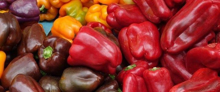 Come coltivare i peperoni in modo biologico