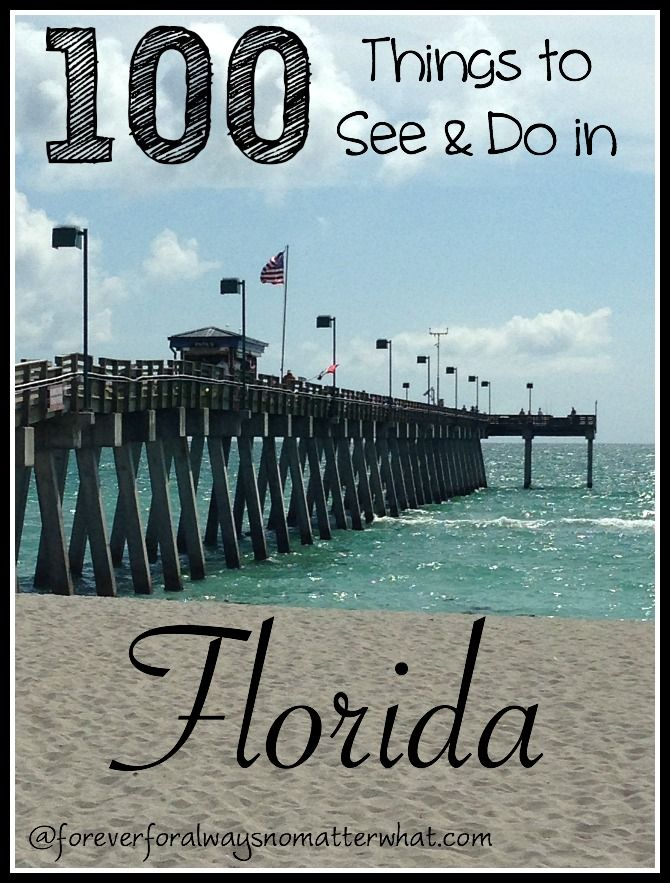 100 Things to See & Do in Florida