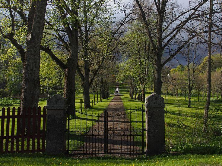 Polku suihkulähtelle #visitsouthcoastfinland #mustionlinna #svatåmanor #landscape #tree #sky #maisema #puu #polku