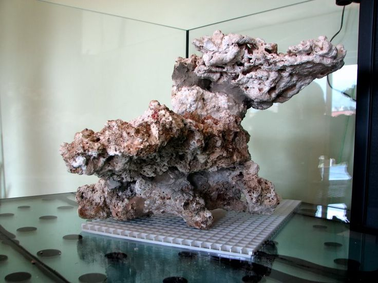 Aquascaping, Show your Skills... - Page 7 - Reef Central Online Community