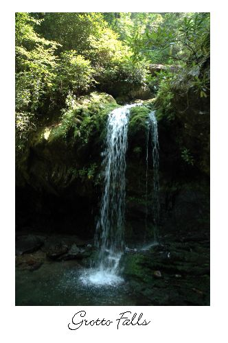 Grotto Falls is such a beautiful waterfall in the Smokies. If you are visiting, you will want to take this hike. The family will love it!