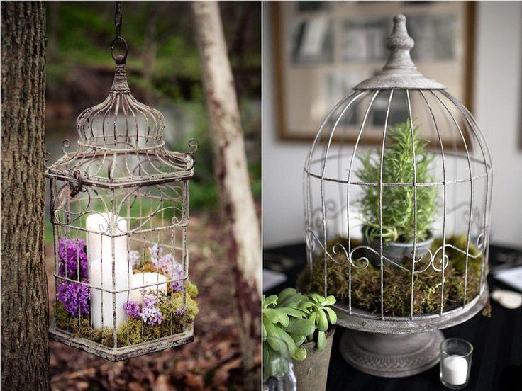 les 25 meilleures id es concernant d coration de cage oiseaux sur pinterest cages oiseaux. Black Bedroom Furniture Sets. Home Design Ideas