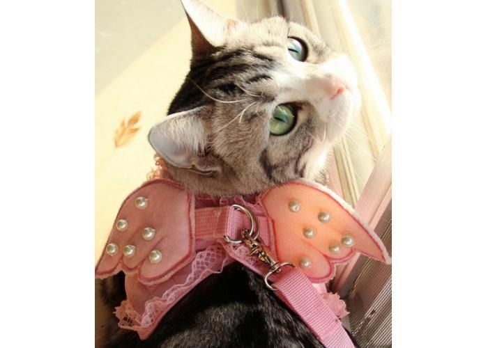 Descripción del producto: Arnes para gato tipo peto o pechera con correa con un hermoso diseño de alas de ángel Color: rosa, blanco Talla Pecho longitud XS 28 cm 13 cm S 36 cm 15 cm M 40 cm 16 cm L 46 cm  17 cm XL 54 cm 19 cm