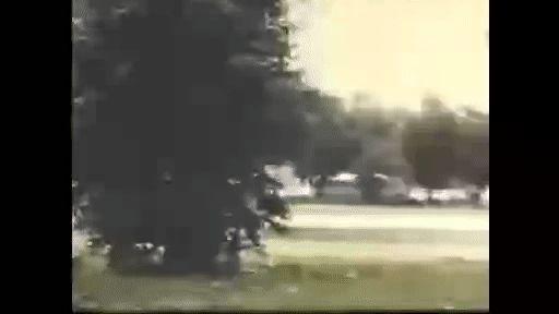 The Krels - Psychedelic Feelin' - https://www.garage-rock-radio.com/the-krels-psychedelic-feelin-2.html/