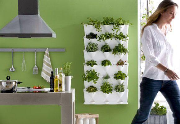 Cultivar hierbas aromáticas en casa - Hogar Sano - DecoEstilo.com