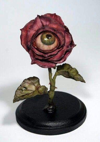 Eyeball plant -Horrific finds
