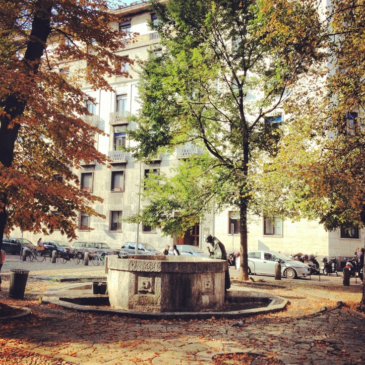 22. In my town #octoberphotoaday #Milan #autumn