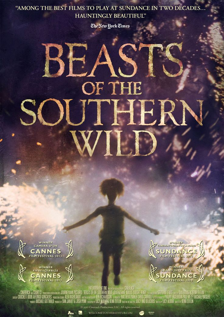 Beast of the Southern Wild, part of our Road to the Oscars series