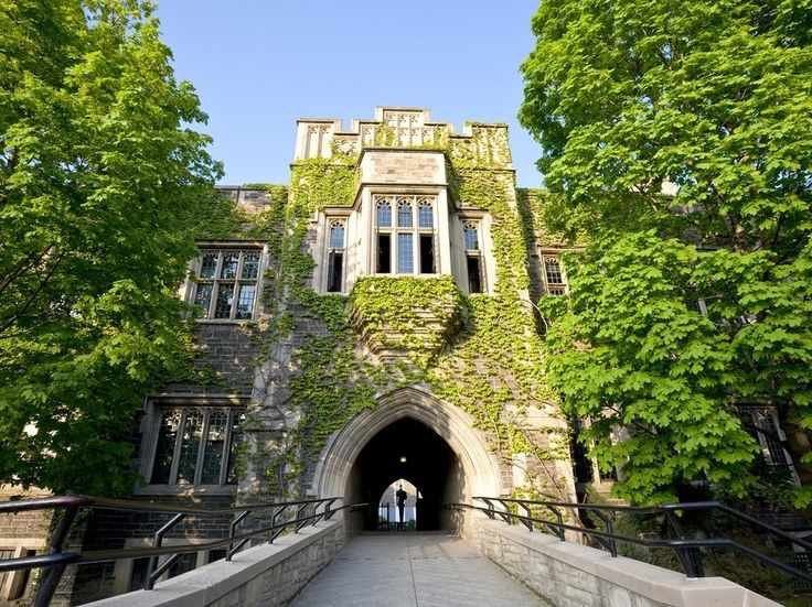 A ten-minute walk through this tree-lined slice of U of T's downtown campus offers treasures like Hart House, an exquisite Beaux-Arts Gothic Revival confection, and Soldiers' Tower, a monument to students lost in WWI.