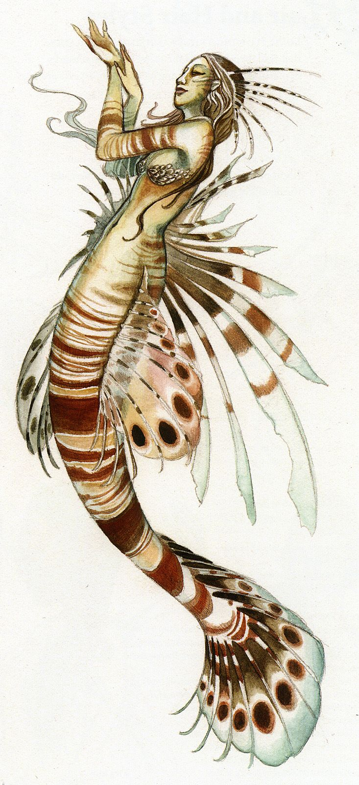 Lionfish Mermaid - woman mixed with a Lionfish
