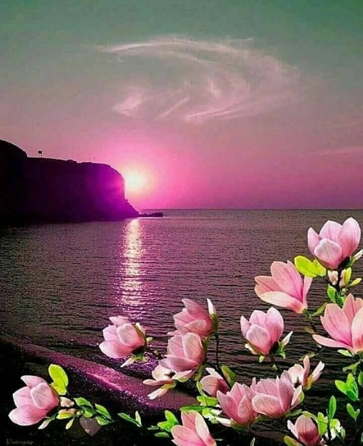 Azatlılar (kurtuluş) Namazı      Kim Şevval ayinda ister gece ister gündüz olsun sekiz rekat namaz kilar,h er rekatta 1 Fatiha 15 Ihla...