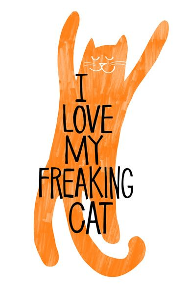 I love my freaking cat - orange Art Print