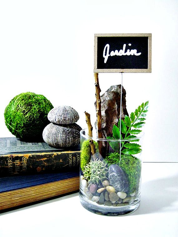 Place Settings Moss and Lichen Terrarium & Chalkboard Sign Plant Marker: Wedding Table Numbers and Place Settings Wedding Decor Idea