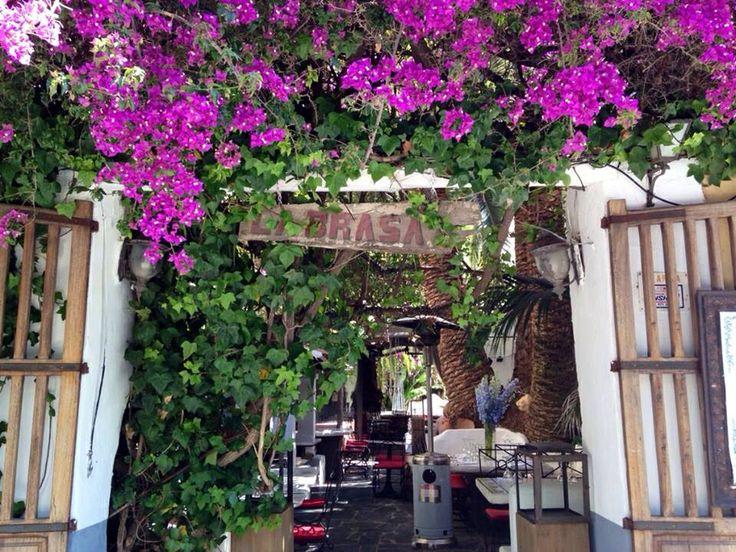 La Brasa; Ibiza.