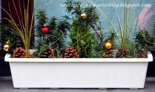 @vontagzutagmari Weihnachten vor dem Fenster. Ideen für Blumenkisterln. http://vontagzutag-mariesblog.blogspot.com