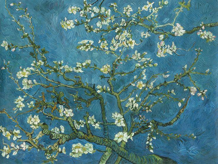 Almond Blossom - Decoration Murale & Papier Peint Photo - Photowall
