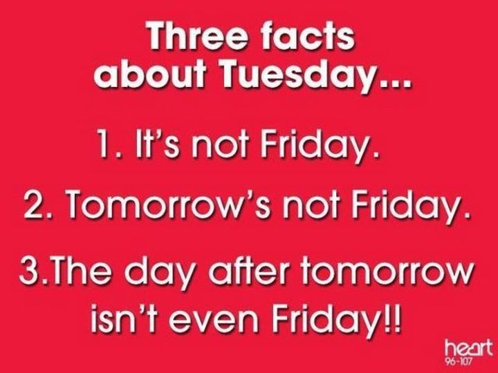 101 Funny Tuesday Memes When You Re Happy You Survived A Workday Tuesday Quotes Good Morning Happy Tuesday Quotes Tuesday Quotes Funny