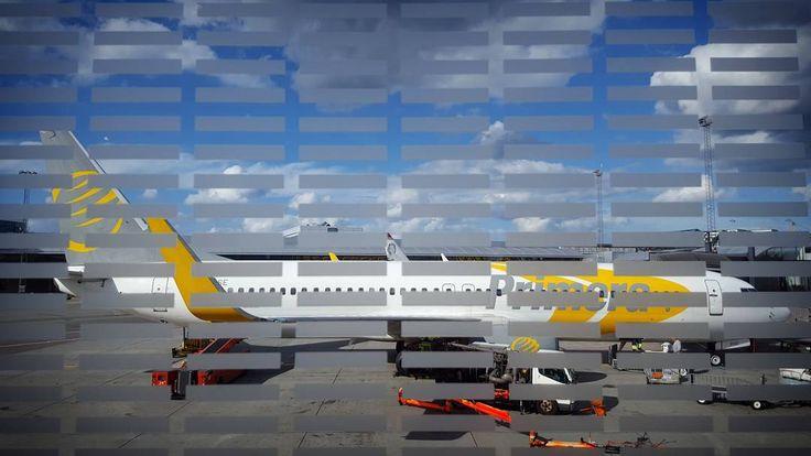 'Boeing 737' - #Copenhagen #airport #Kastrup #Denmark #Boeing #737 #Primera #photography #travel #flight