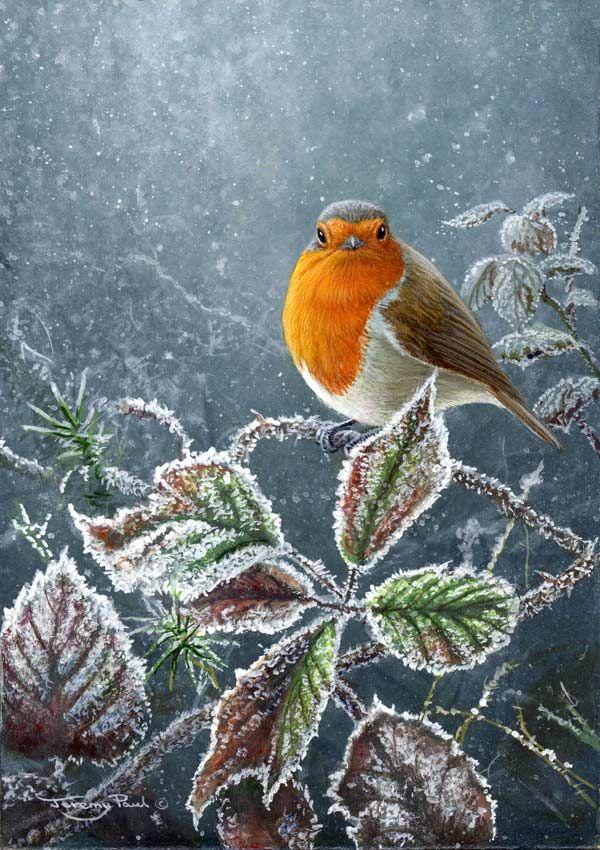 Galleries | Jeremy Paul - Wildlife Artist