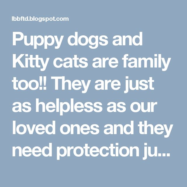 Puppy dogs and Kitty cats are family too!! They are just as helpless as our loved ones and they need protection just as well.   To learn more go to my presentation  http://www.lbbzlicense.blogspot.com Join of my affiliate link here:  http://www.zpettags.com/lbbmarketing You can contact me on google voice 205-409-0788