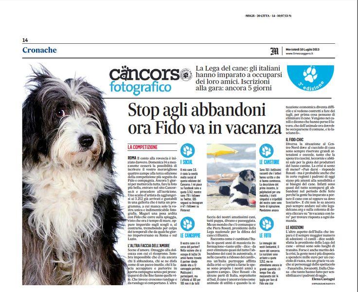 Stop agli abbandoni, ora Fido va in vacanza! www.cancorso.it cancorso2013, cancorso, cani, cane, concorso, concorsi, contest, ilmessaggero, quotidiano, animali, storie, canstorie, coppie, cancoppie