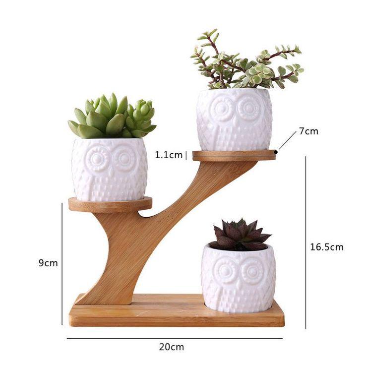1set Ceramic Owl Garden Pots Modern Decorative Nursery Succulent Plant Pot 3 Bonsai Planters with 3-Tier Bamboo Shelf