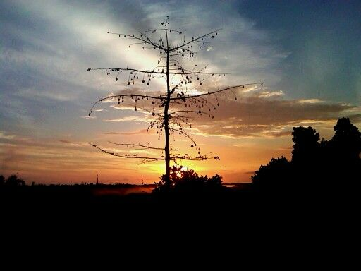 Sunrise Bontang ...