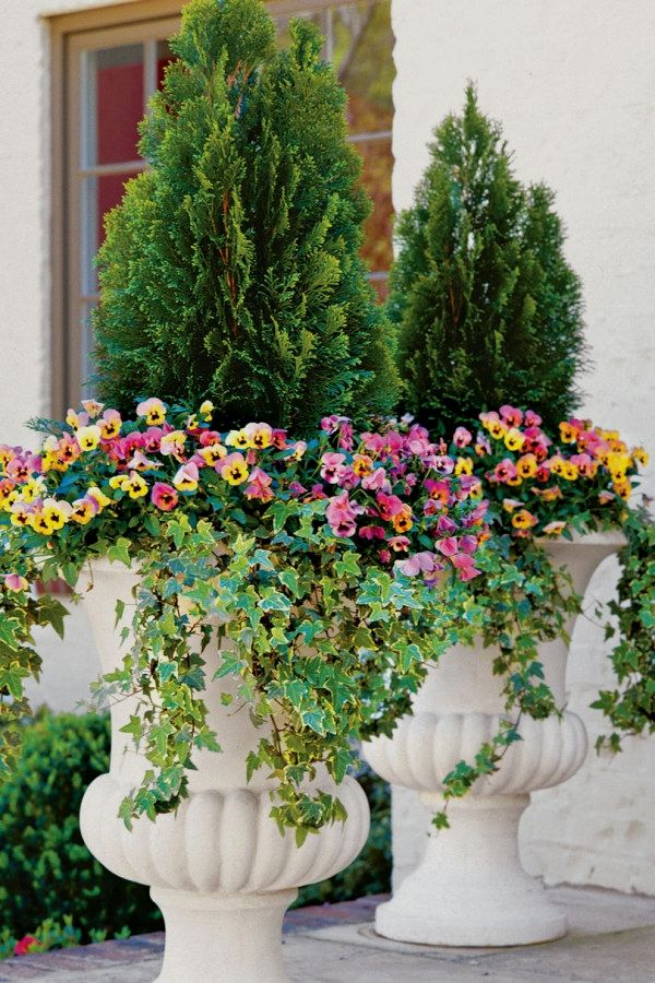 29 Easy Container Gardening Ideas You Can Do Yourself For Your Patio