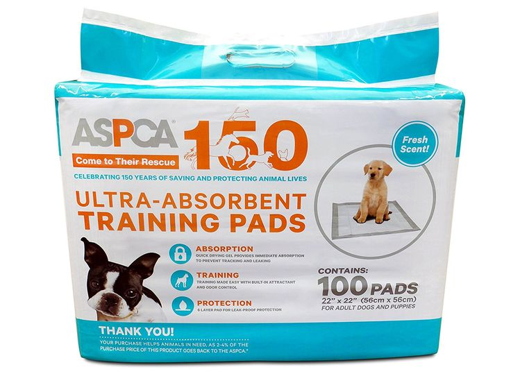 ASPCA Dog Training Pads (100 Pack) >>> Check out the image by visiting the link.
