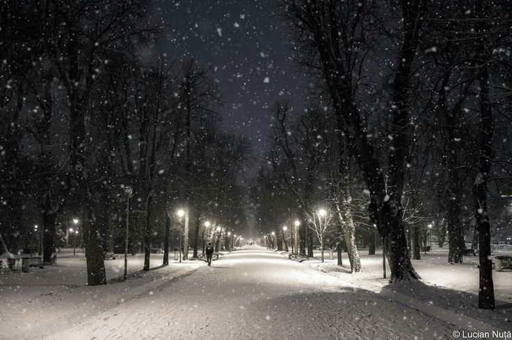 Snowy night in Cluj-Napoca