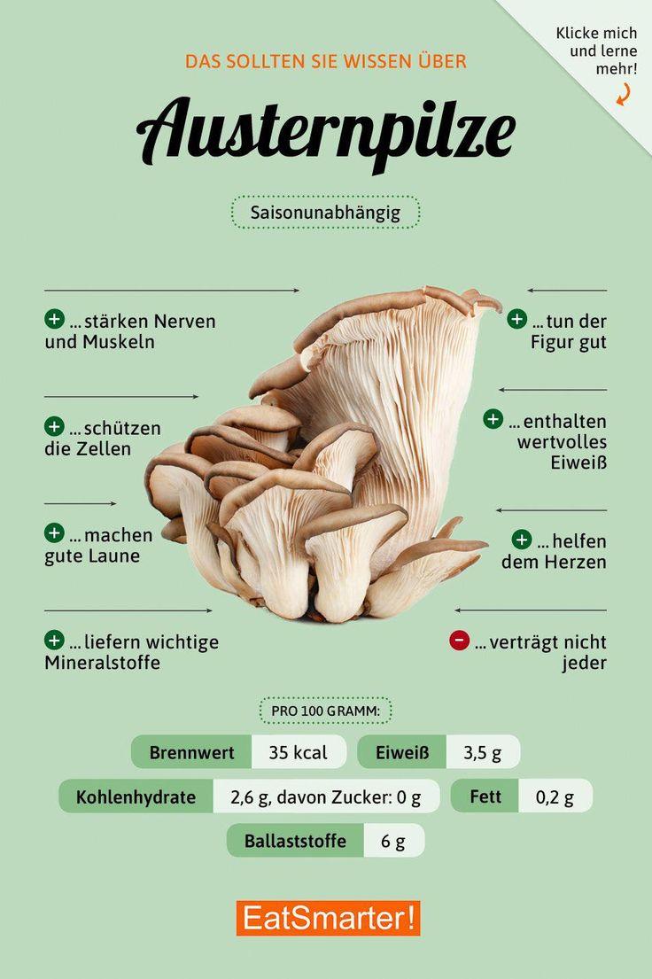 Sie sollten über Austernpilze wissen eatsmarter.de # Ernährung #Infografi … – Gesundheit