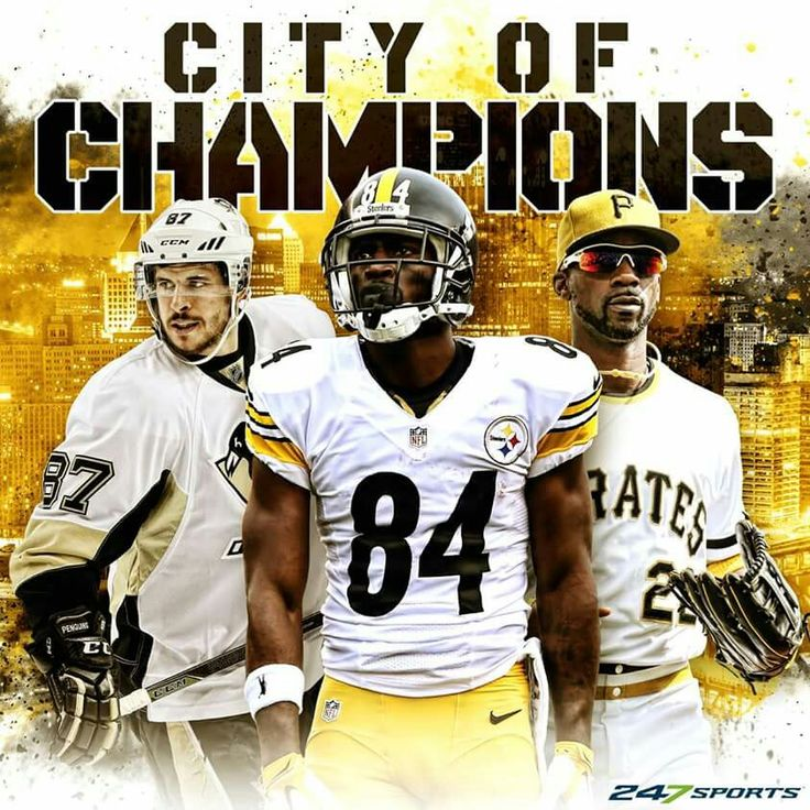 Pittsburgh Penguin, Pittsburgh Steelers & Pittsburgh Pirates