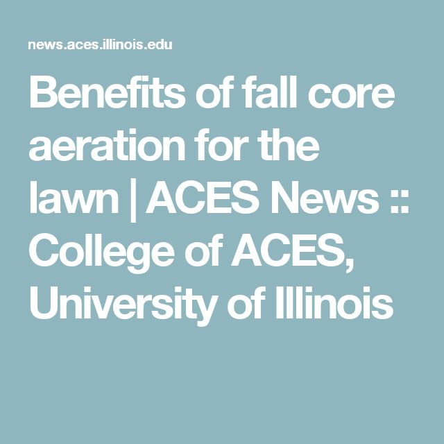 Benefits of fall core aeration for the lawn  | ACES News :: College of ACES, University of Illinois