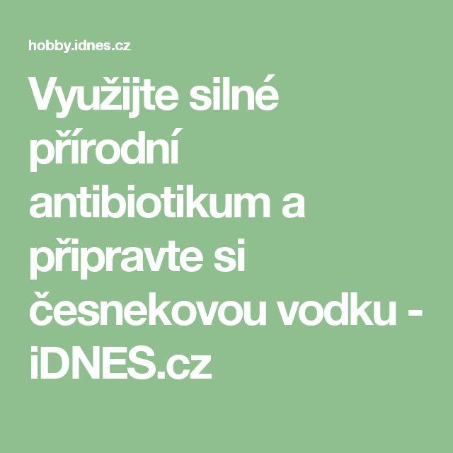 Využijte silné přírodní antibiotikum a připravte si česnekovou vodku - iDNES.cz