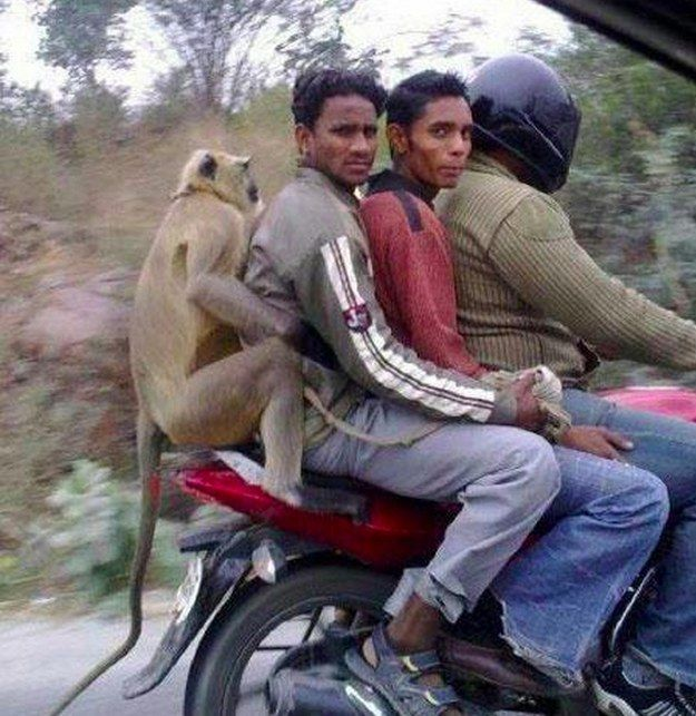 This group of bros just enjoying a motorcycle ride together. | 39 Indians You Wish You Knew In Real Life