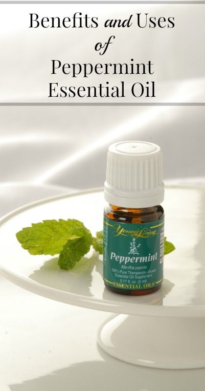 Benefits of Peppermint Essential Oil   {Essential Oil Uses, Essential Oil Benefits, Young Living, Healthy Living}